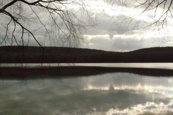 http://sousentendu.cowblog.fr/images/P1080981-copie-1.jpg