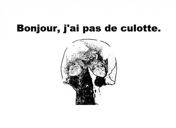 http://sousentendu.cowblog.fr/images/pasdeculotte.jpg